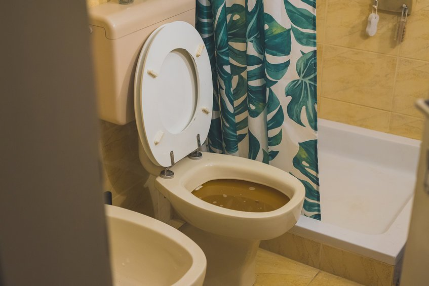 How Do Toilet Backups Occur